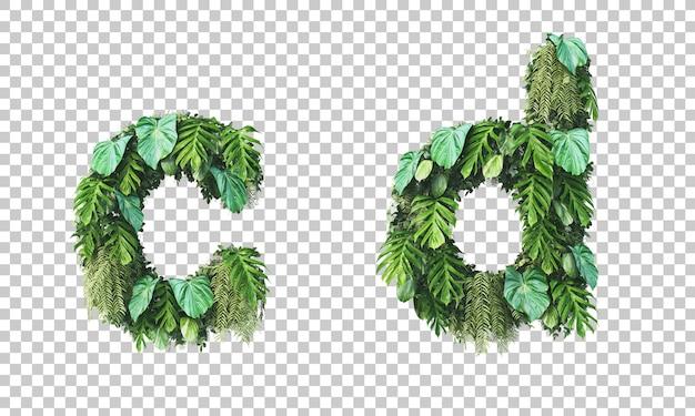 Rendu 3d du jardin vertical alphabet minuscule c et alphabet d
