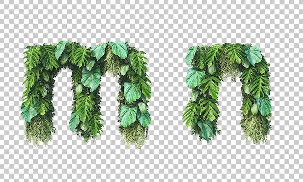 Rendu 3d du jardin vertical alphabet minuscule m et alphabet n