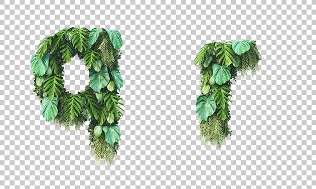 Rendu 3d du jardin vertical alphabet minuscule q et alphabet r