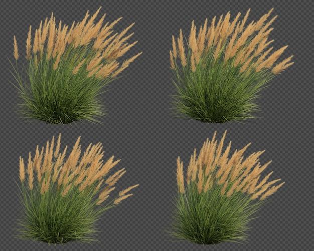 Le rendu 3d de l'ensemble de coup d'herbe de pointe d'argent