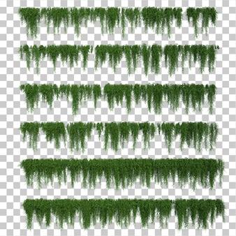 Rendu 3d de l'ensemble des feuilles de bougainvilliers