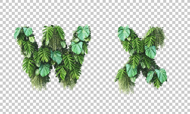 Rendu 3d de jardin vertical alphabet minuscule w et alphabet x