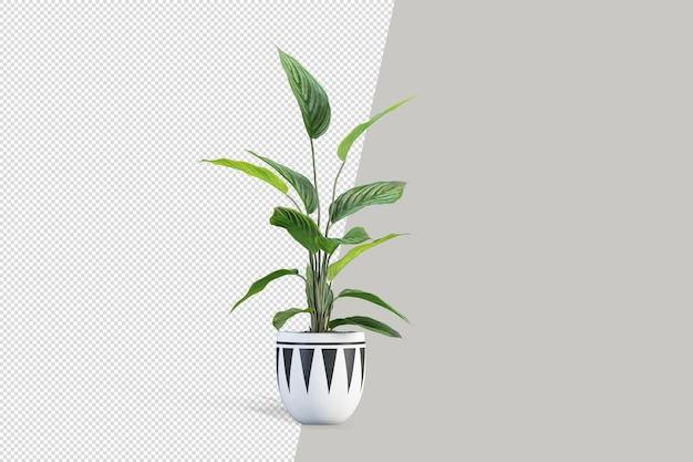 Rendu 3d De Plante Isométrique PSD Premium