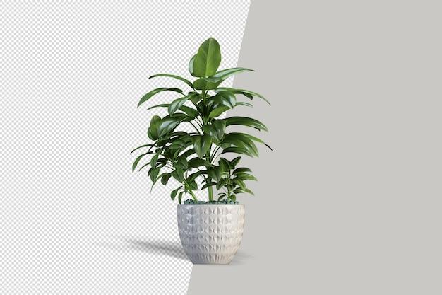 Rendu 3d de plante isométrique