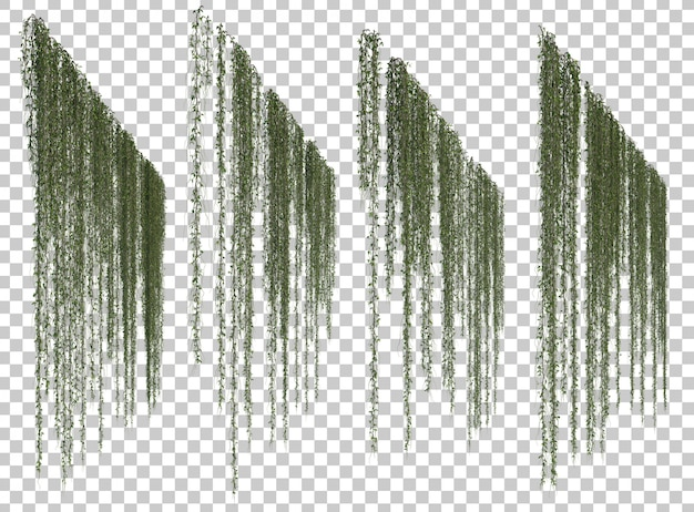 Rendu 3d de plantes suspendues