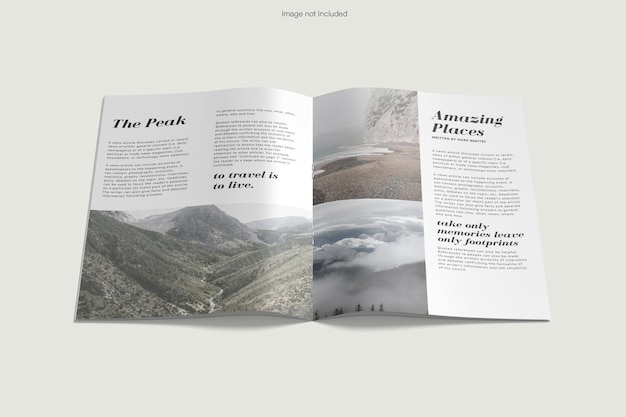 Rendu de conception de maquette de brochure