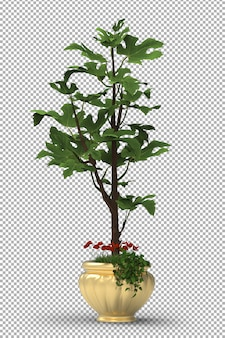 Rendu de plante isolée. plantes en pot. vue de face isométrique. 3d. créateur de scène.