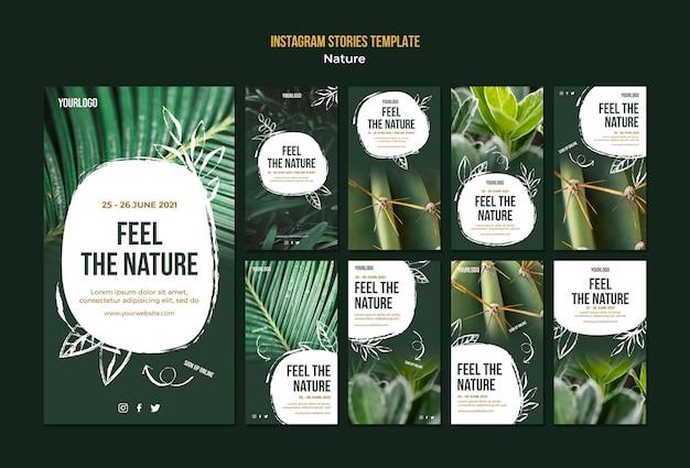 Ressentez Les Histoires Instagram De L'événement Nature PSD Premium