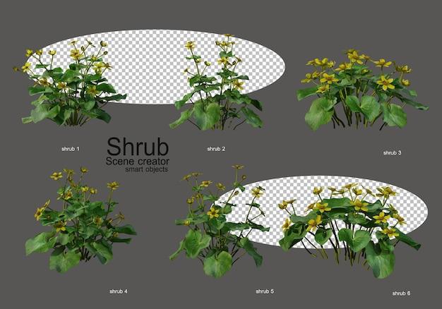 Une variété d'arbustes et de fleurs
