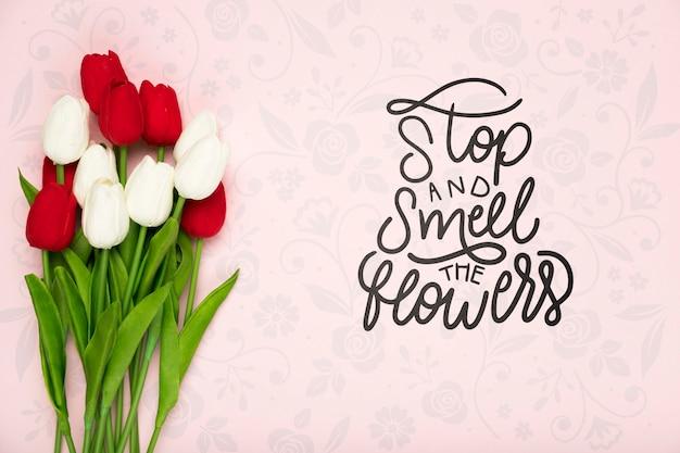 Vue de dessus de belles tulipes au printemps