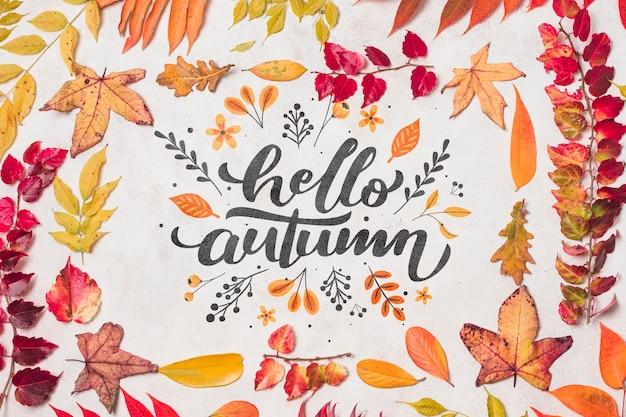 Vue de dessus décoration d'automne avec des feuilles