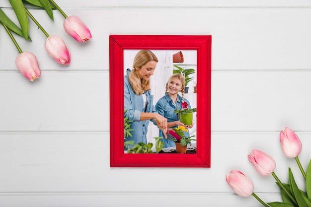 Vue de dessus du cadre avec des tulipes à ressort