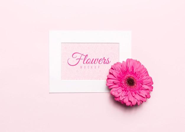 Vue de dessus fleur rose avec cadre blanc