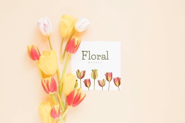 Vue de dessus des fleurs avec espace copie
