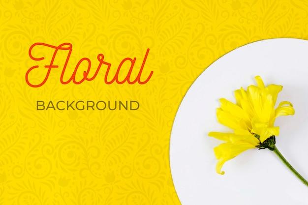 Vue de dessus fond floral coloré