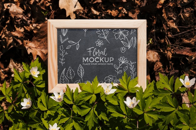 Vue de dessus de la maquette du cadre avec des feuilles et de la végétation