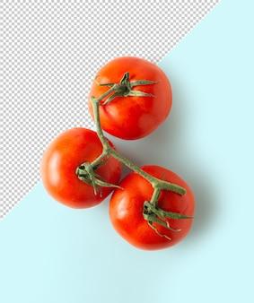 Vue de dessus de la maquette de tomate