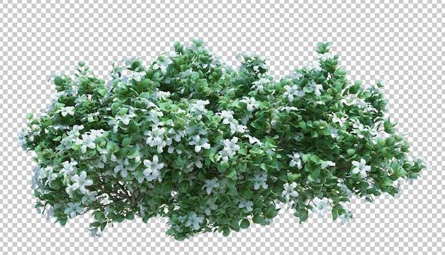 3d rendem a árvore da escova isolada no branco