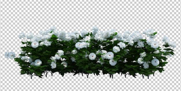3d render brush tree isolado