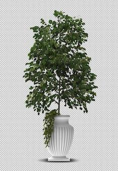 3d render da planta interior em vaso isolado