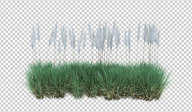 3d render escova árvore isolada