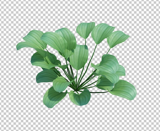 3d render lagoa árvore isolada