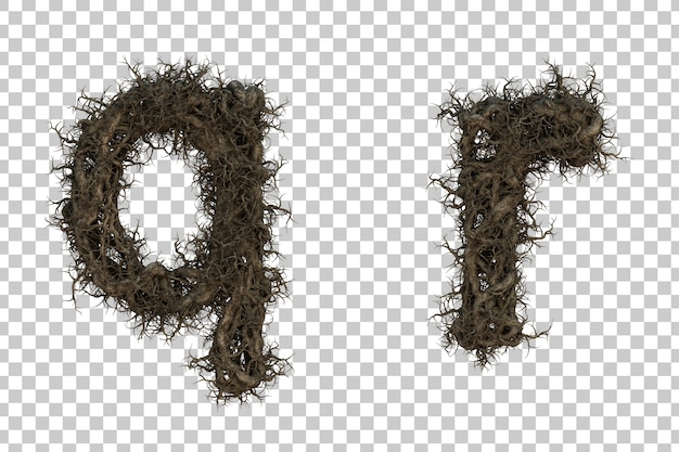 3d rendering galho de árvore alfabeto qe alfabeto r
