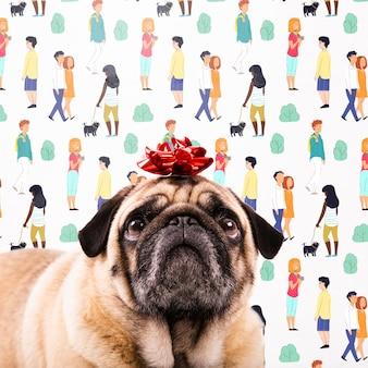 Adorável cachorro usando maquete de nó de presente