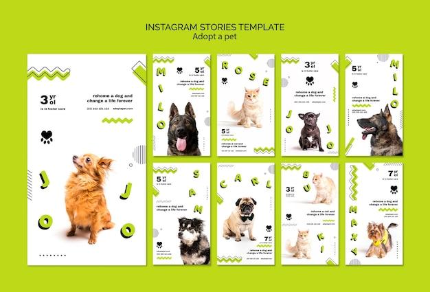 Adote histórias de animais de estimação no instagram