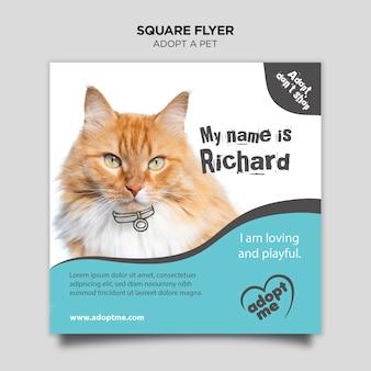 Adote um gato panfleto quadrado