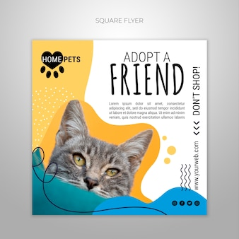 Adote um modelo de folheto quadrado de estimação com foto de gato