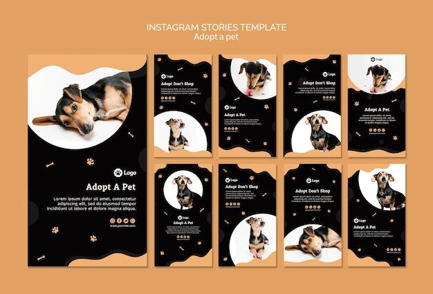 Adote um modelo de histórias do instagram de conceito de animal de estimação