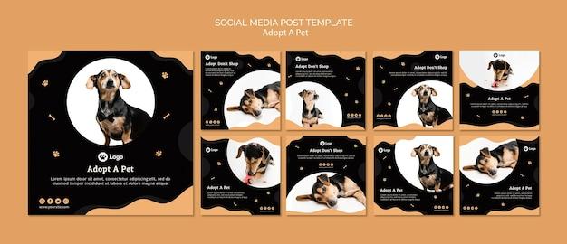 Adote um modelo de postagem de mídia social de conceito de animal de estimação