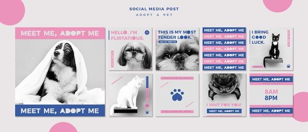 Adote um modelo de postagem de mídia social do conceito de animal de estimação