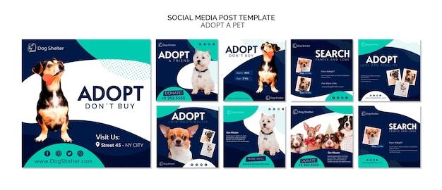 Adote uma coleção de postagens do instagram para animais de estimação