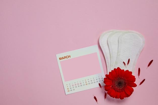 Almofadas sanitárias menstruais, calendário feminino