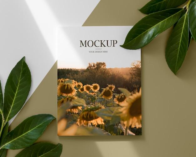 Arranjo plano com revista e folhas