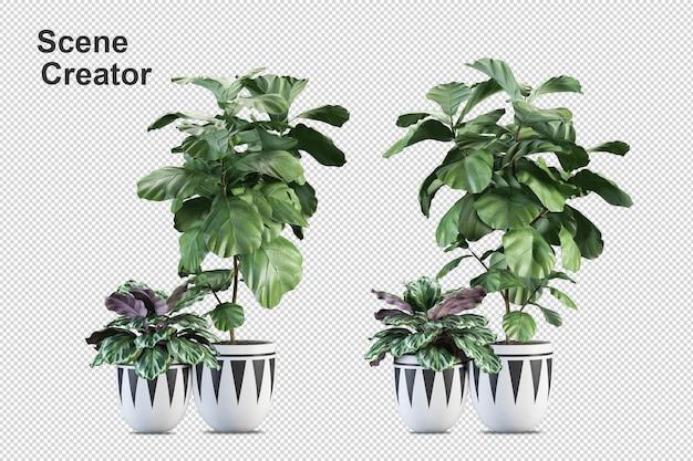 Árvore de pincel de renderização 3d isolada no branco