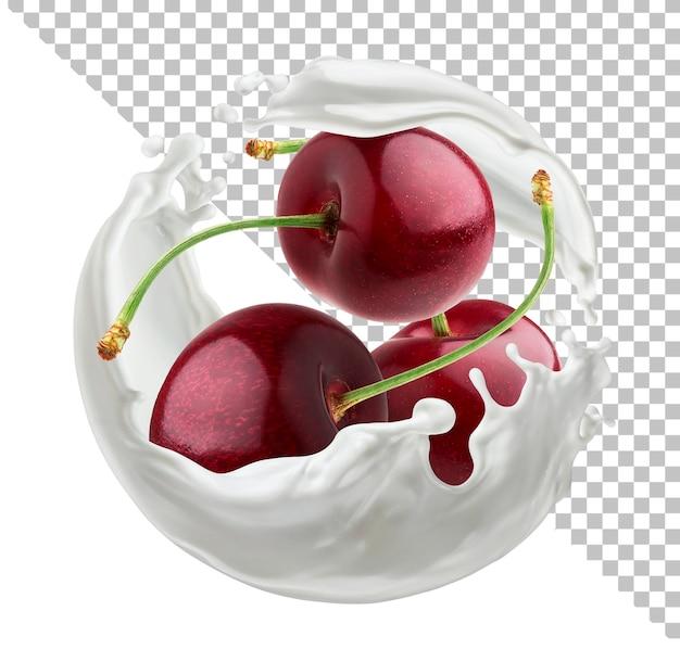 Bagas de cereja com respingo redondo de leite isolado