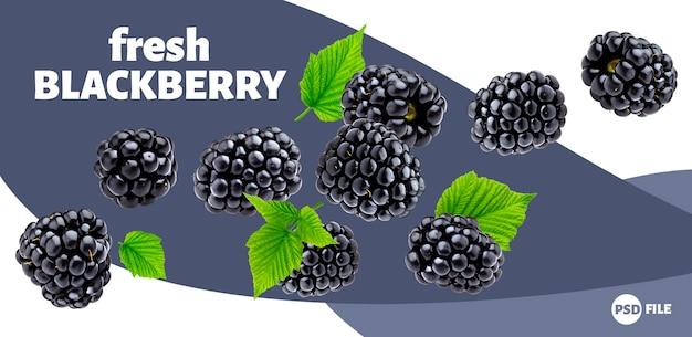 Bandeira madura de blackberry