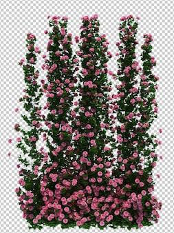 Bela árvore de pincel de renderização em 3d isolada