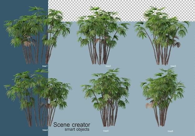 Bela renderização 3d de árvores isoladas