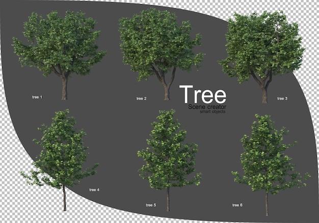 Bela variedade de renderização de árvores
