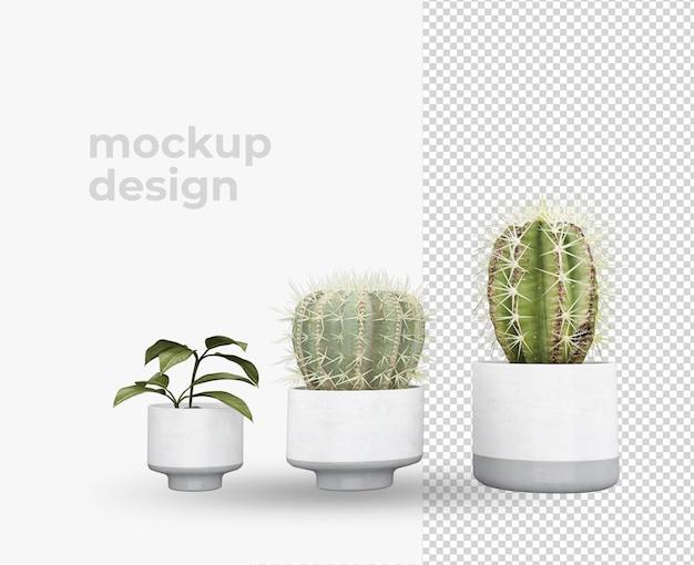 Cactus em pote em renderização de design de decoração 3d