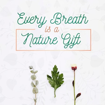 Cada respiração é um conceito de presente natural