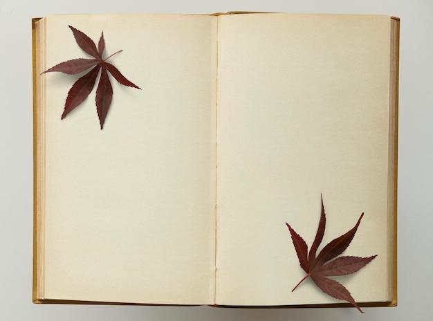 Caderno velho de grunge com maquete de folhas secas