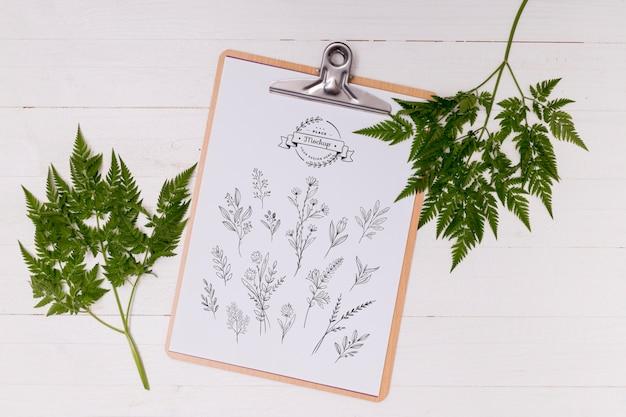 Camada plana da maquete do conceito de folhas