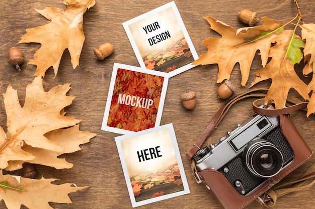 Câmera e fotos com folhas de outono