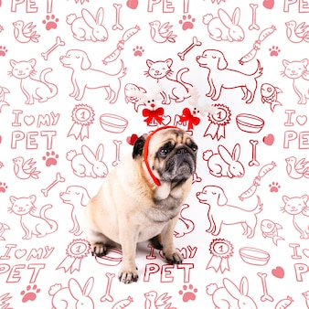 Cão bonito com maquete de coroa vermelha