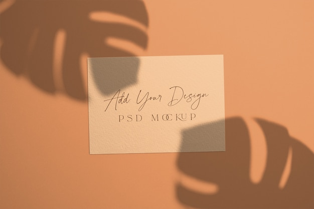 Cartão com sobreposição sombra monstera folhas